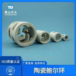 现货供应各种规格耐高温陶瓷鲍尔环