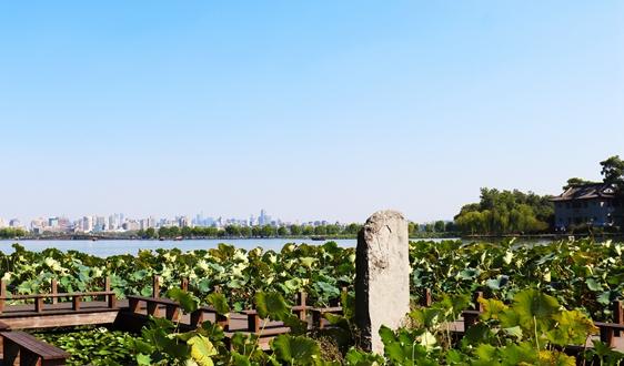 2979万!上海市环境监测中心2020年水质自动站运维工作采购项目的公开招标公告