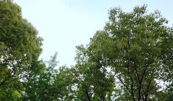福建省生态环境厅组织召开净土保卫战和农业农村污染治理攻坚战工作推进会
