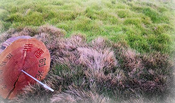 """绿色发展示范案例(江苏篇)丨扬州:""""鱼""""和""""熊掌""""可以兼得"""