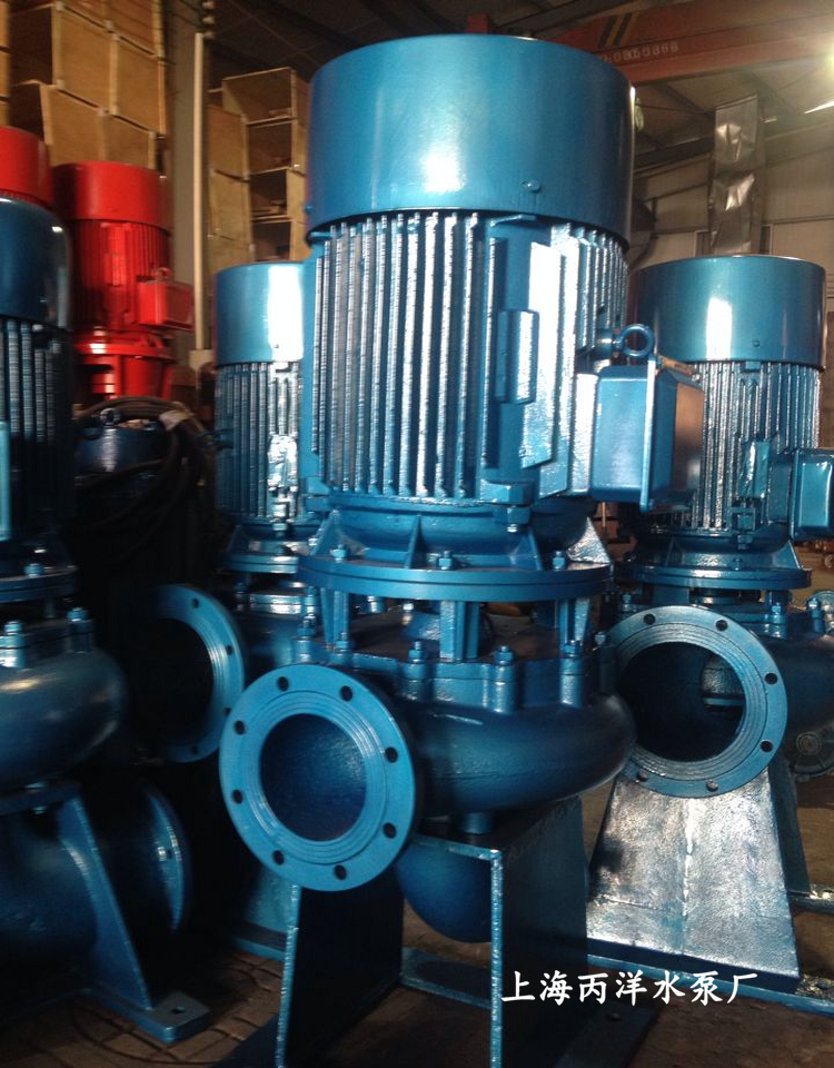lw250-600-12-37 管道排污泵,lw型直立式管道排污泵图片