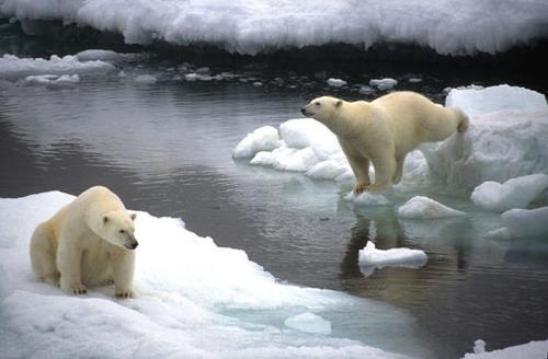 解振华特别代表出席美国加州全球气候行动峰会系列活动