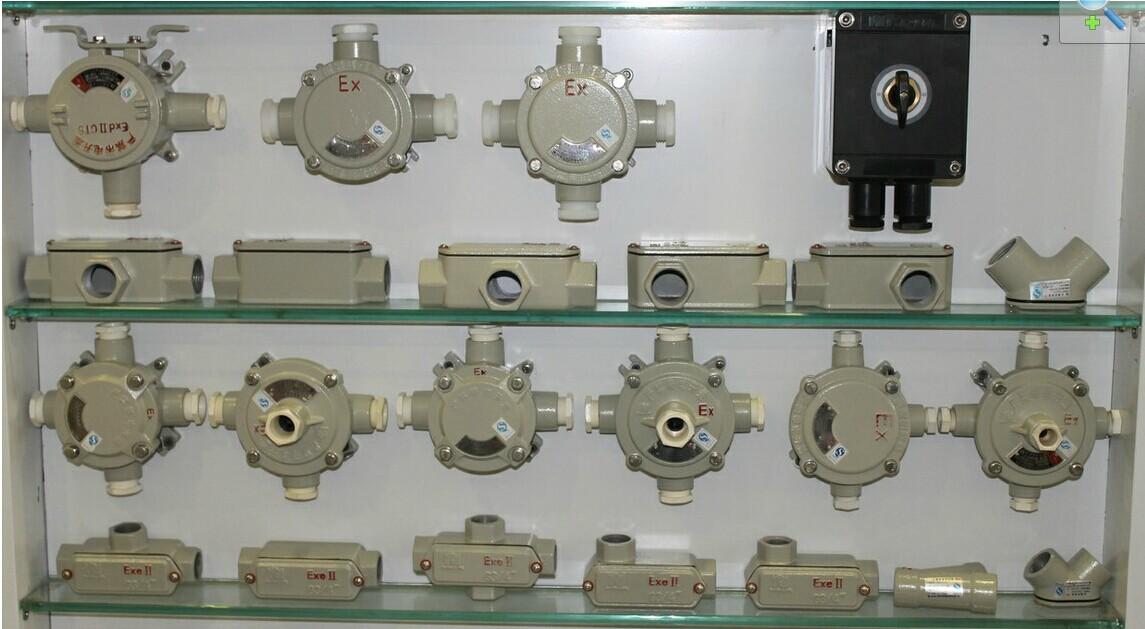 适用于爆炸性气体环境1区、2区; 适用于可然性粉尘环境20区、21区、22区; 适用于II A、II B、II C级爆炸性气体环境; 适用于温度组别为T1~T6的环境; 适用于石油采炼、储存、化工、医药、军工 及军事设施等爆炸性危险环境。 产品特点 外壳采用铝合金高压铸造成型,表面经抛丸后粉末静电喷塑; 引入口具有多种方式及规格,满足现场各种布线需要; 防扭转专用接线端子,安全可靠,接线方便; 引人口螺纹型式常规为管螺纹,也可根据要求加工成公制螺纹或NPT螺纹; 钢管或电缆布线。 技术