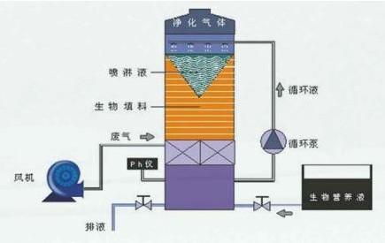 酸碱废气洗涤塔  酸碱废气洗涤塔安装尺寸图