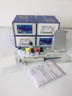 大鼠Elisa试剂盒