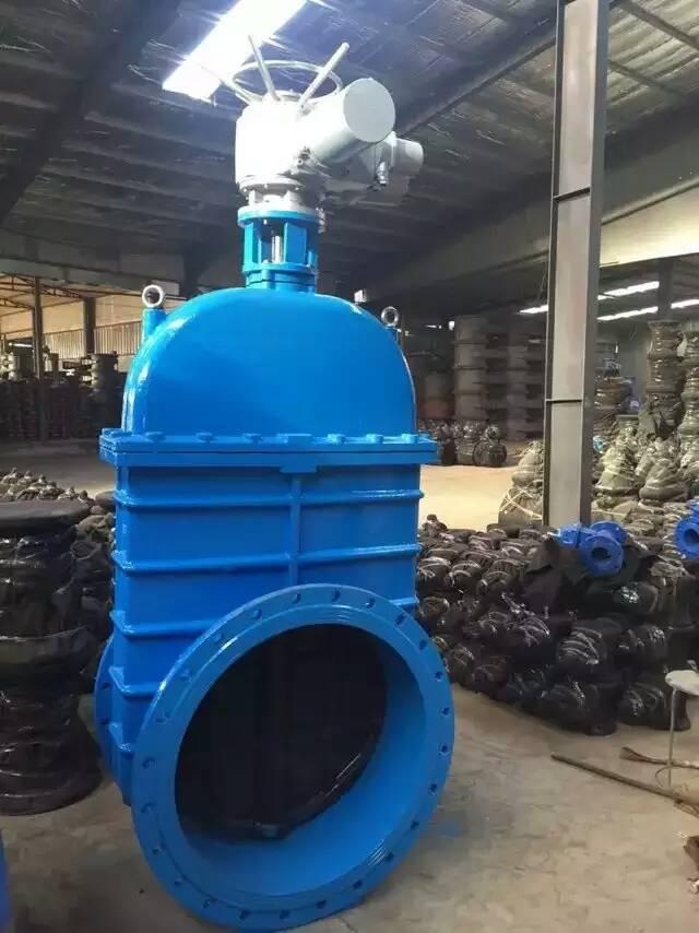 养鱼池循环水弹性座封闸阀应用
