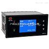 WP-LQ813-02-AAGG-HL-2P热能积算控制仪