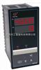 WP-S809-22-08-N-T多路巡检仪