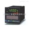 REX-P250程序控制器RKC REX-P250