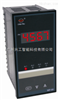 WP-S801-02-23-N数显仪