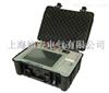 SUTEPT-H低校高式电压互感器现场测试仪