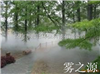 广州天河生态公园人造雾景观工程