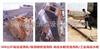 MO5022工业高压清洗机